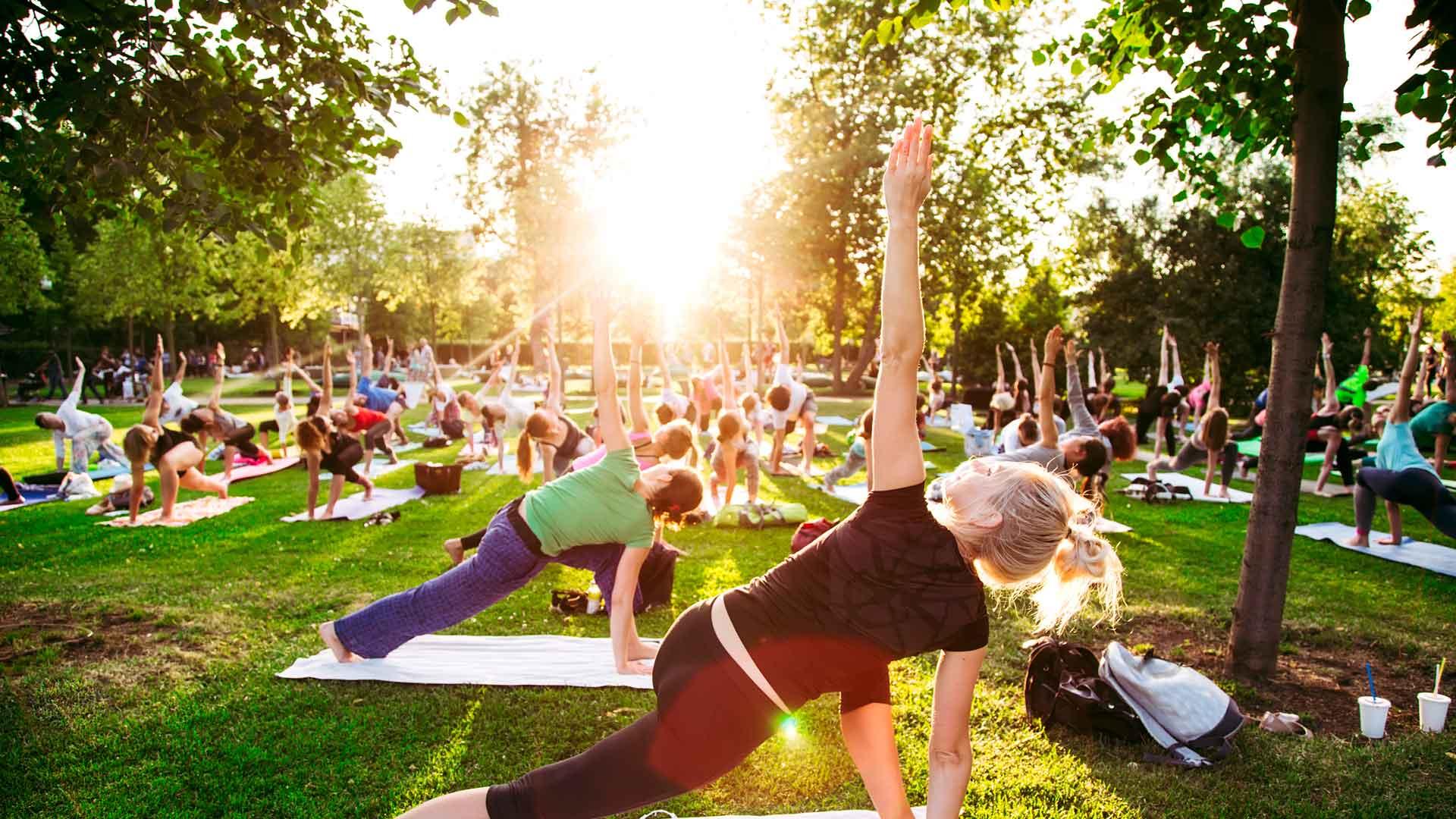 Lugares para hacer yoga en Ciudad de México