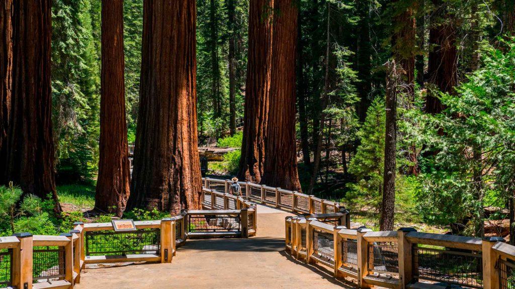 5 lugares de California que debes visitar