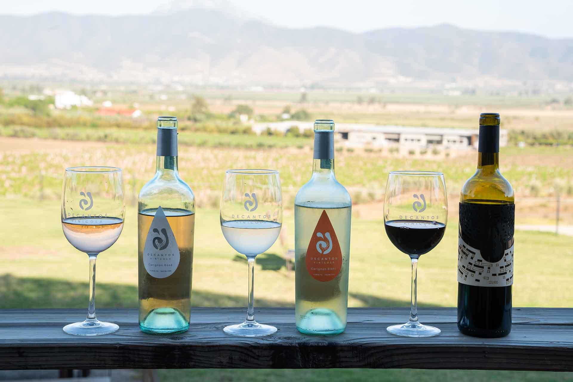 Vinícolas de Baja California