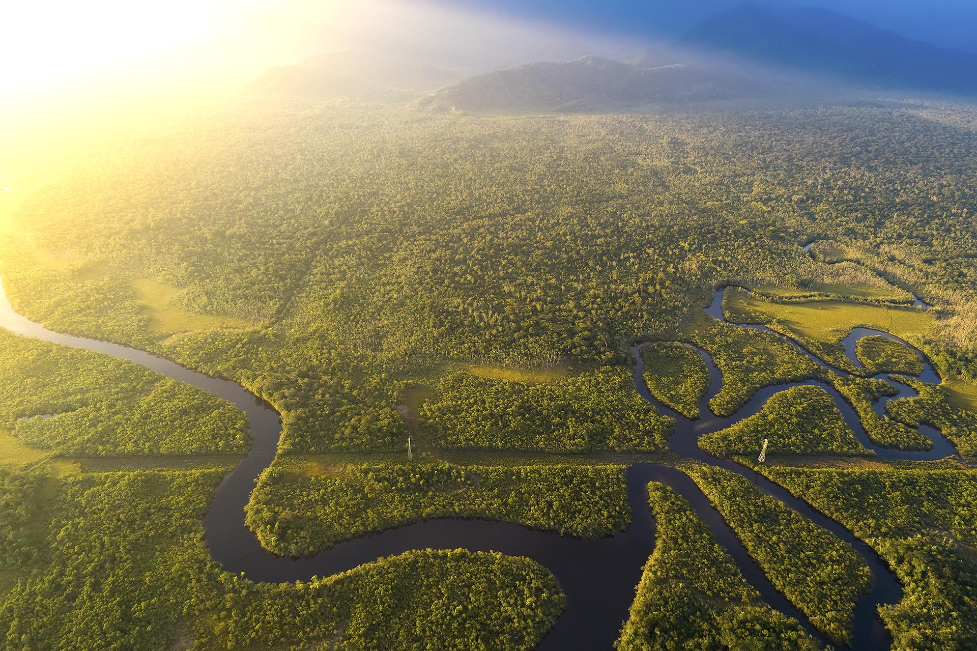 Todo lo que necesitas saber sobre los incendios en la Amazonia