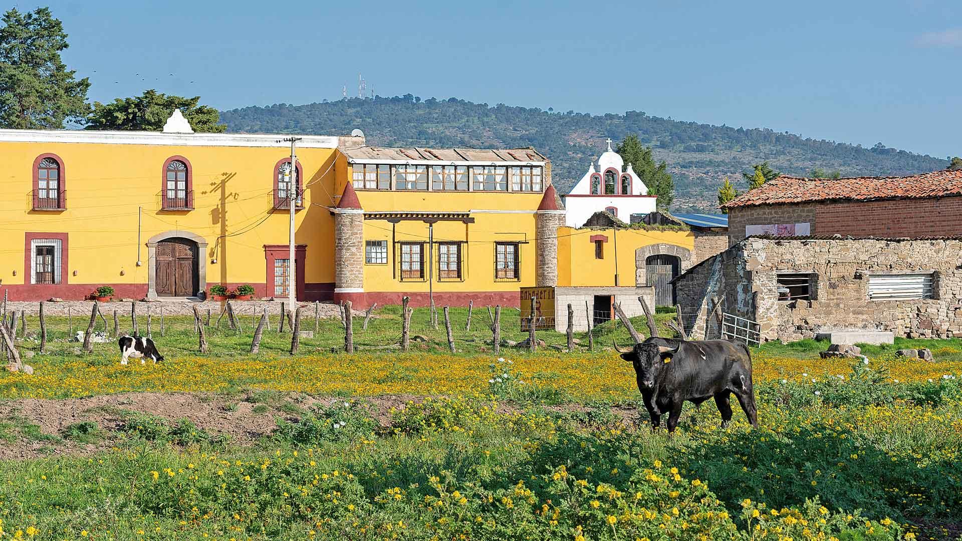 Celebrando 500 años de mestizaje en Tlaxcala