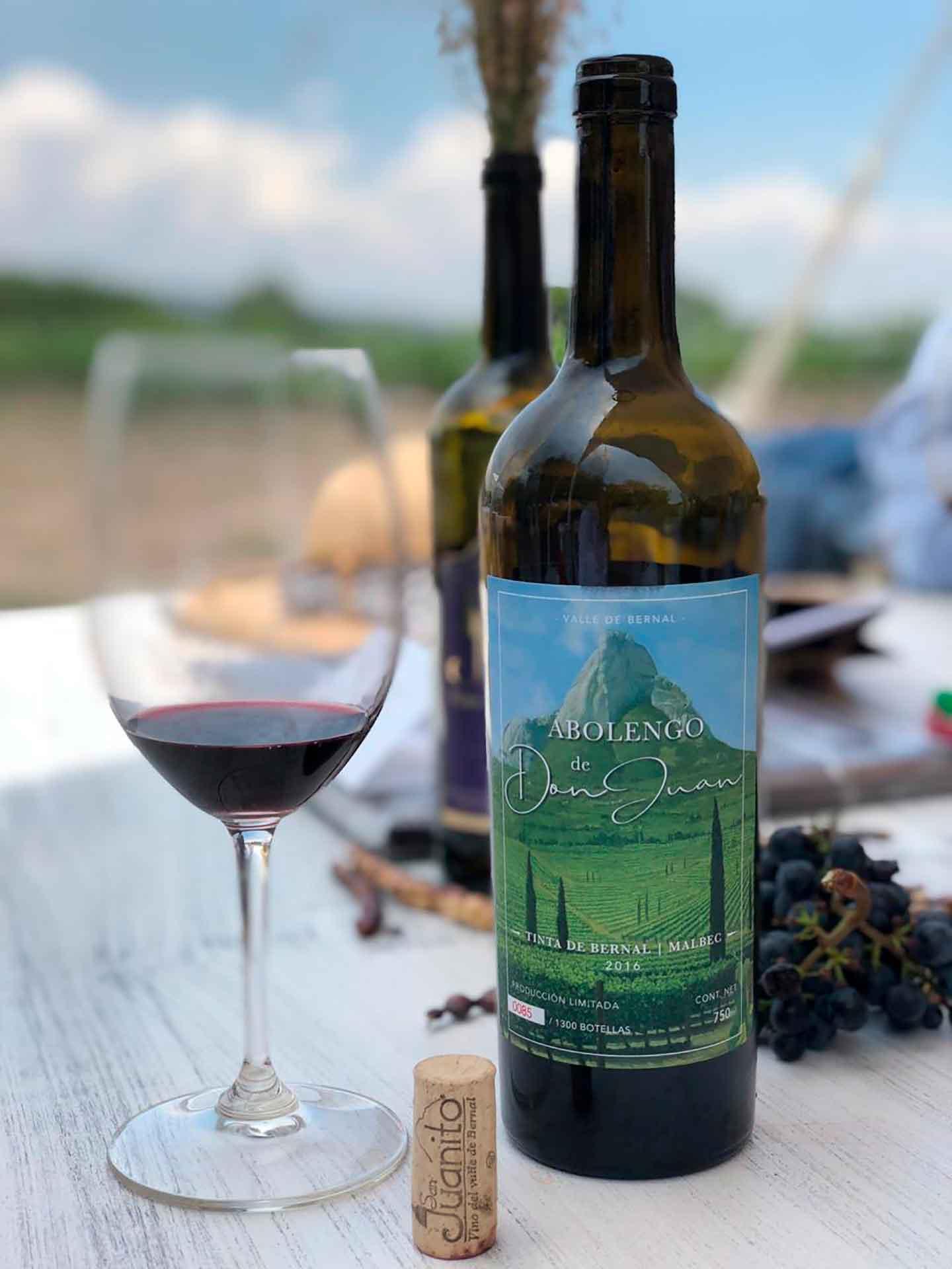 primer Festival del Vino Queretano