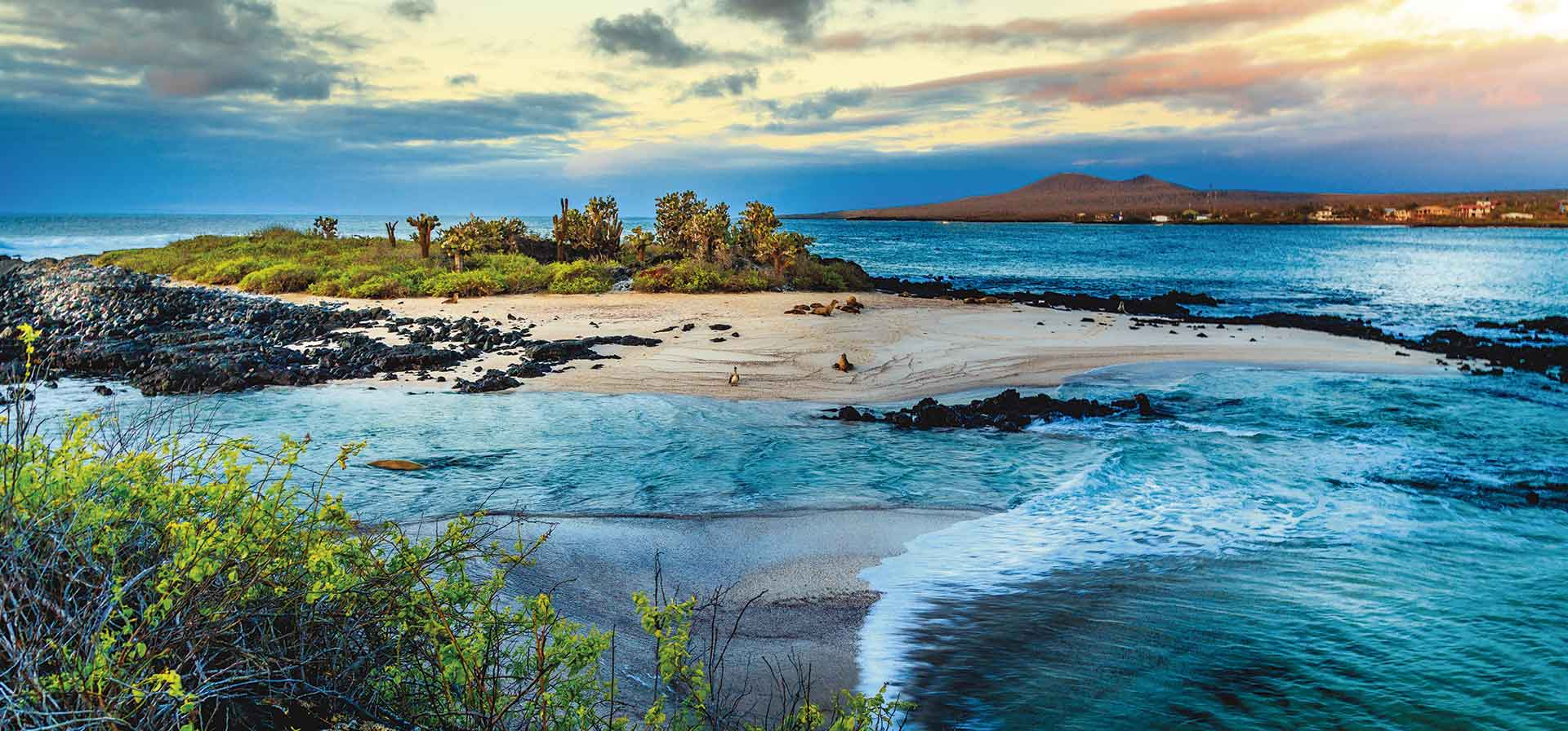 IslasGalapagosMar