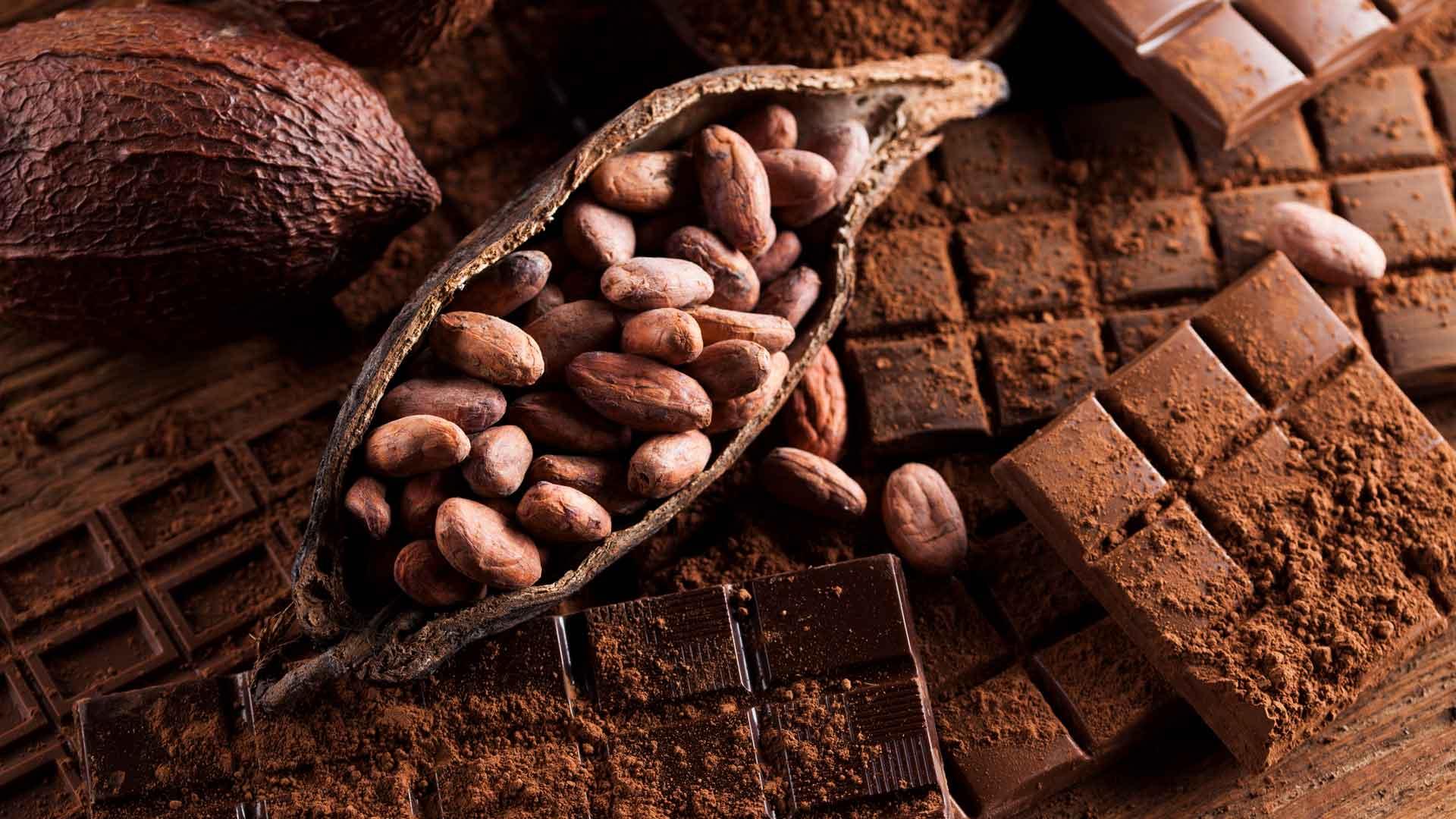 México sabe a cacao y chocolate