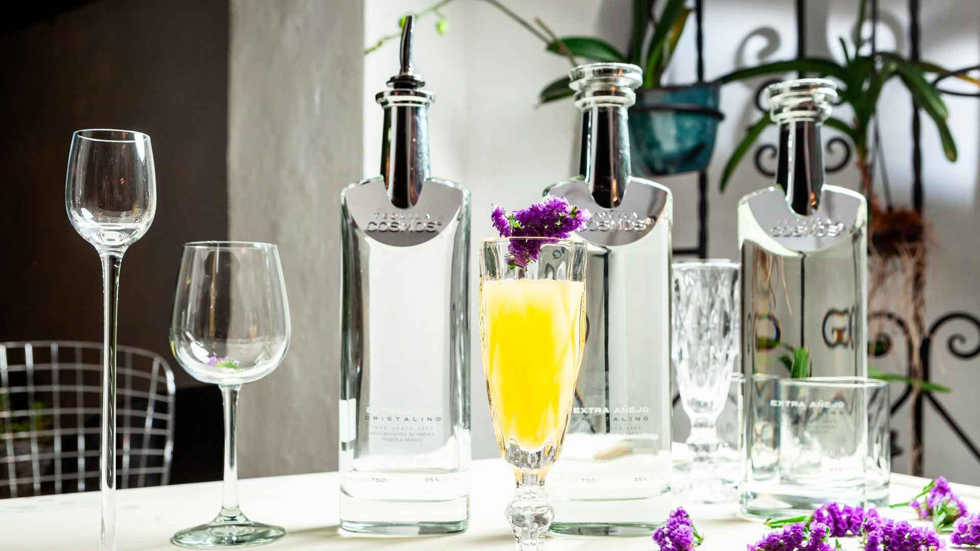 Tequila Cosmos, un regalo al paladar