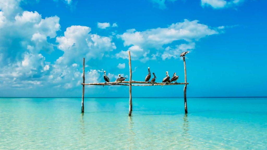 Holbox, la mejor opción para desconectarte en tus vacaciones