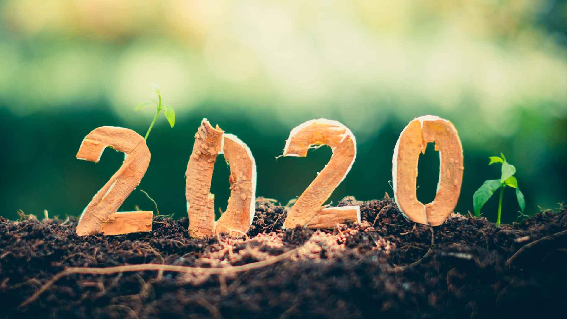 Artículos ecológicos: por un futuro con menos plástico