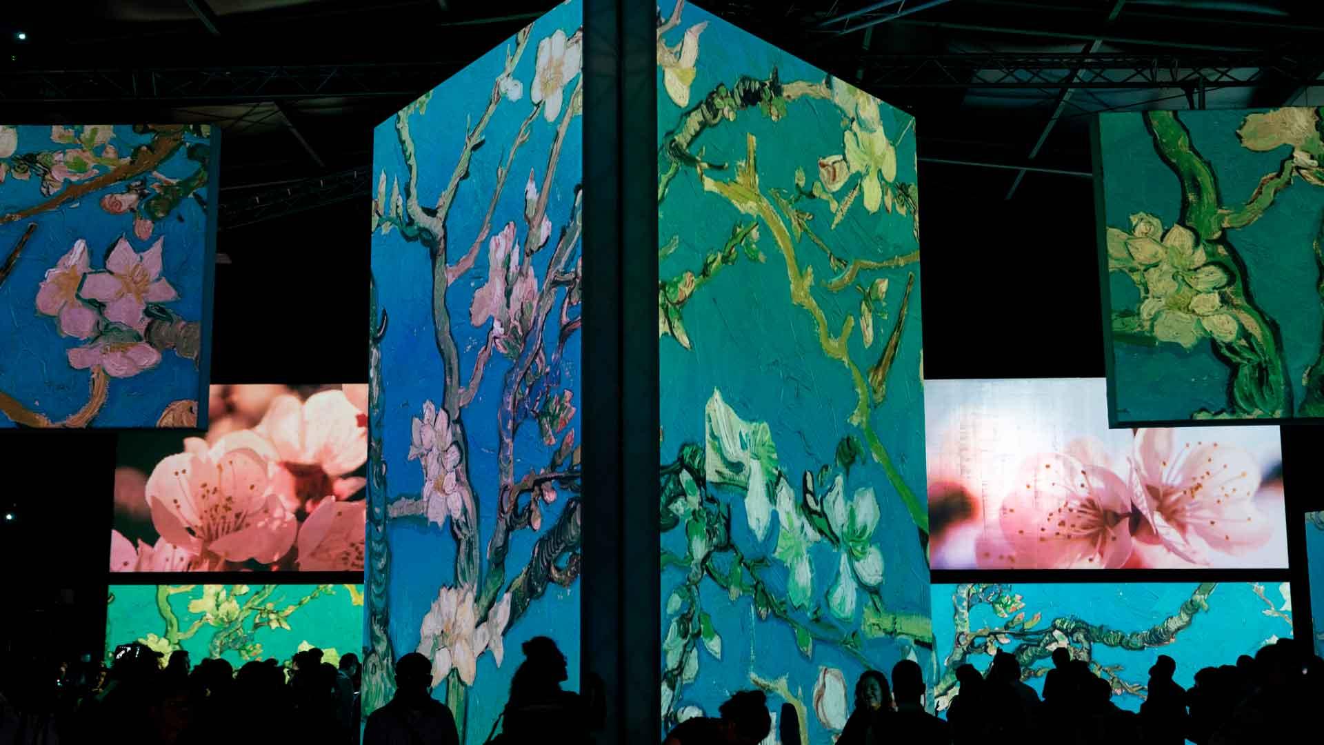 15 acercamientos al arte de Vincent van Gogh