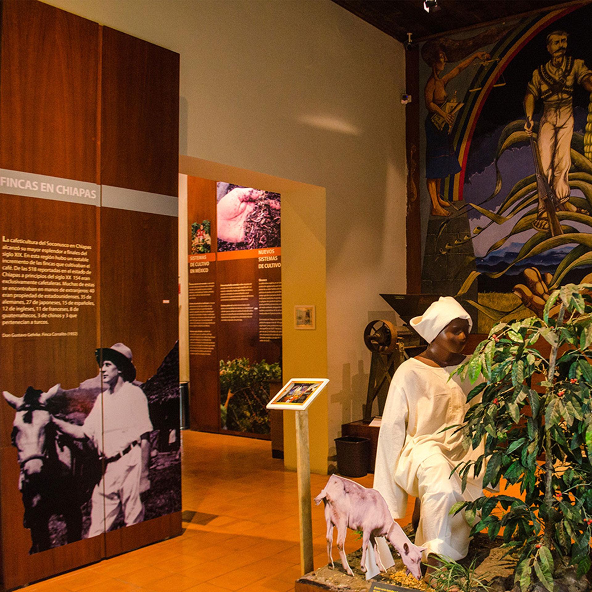 Museos con recorridos virtuales