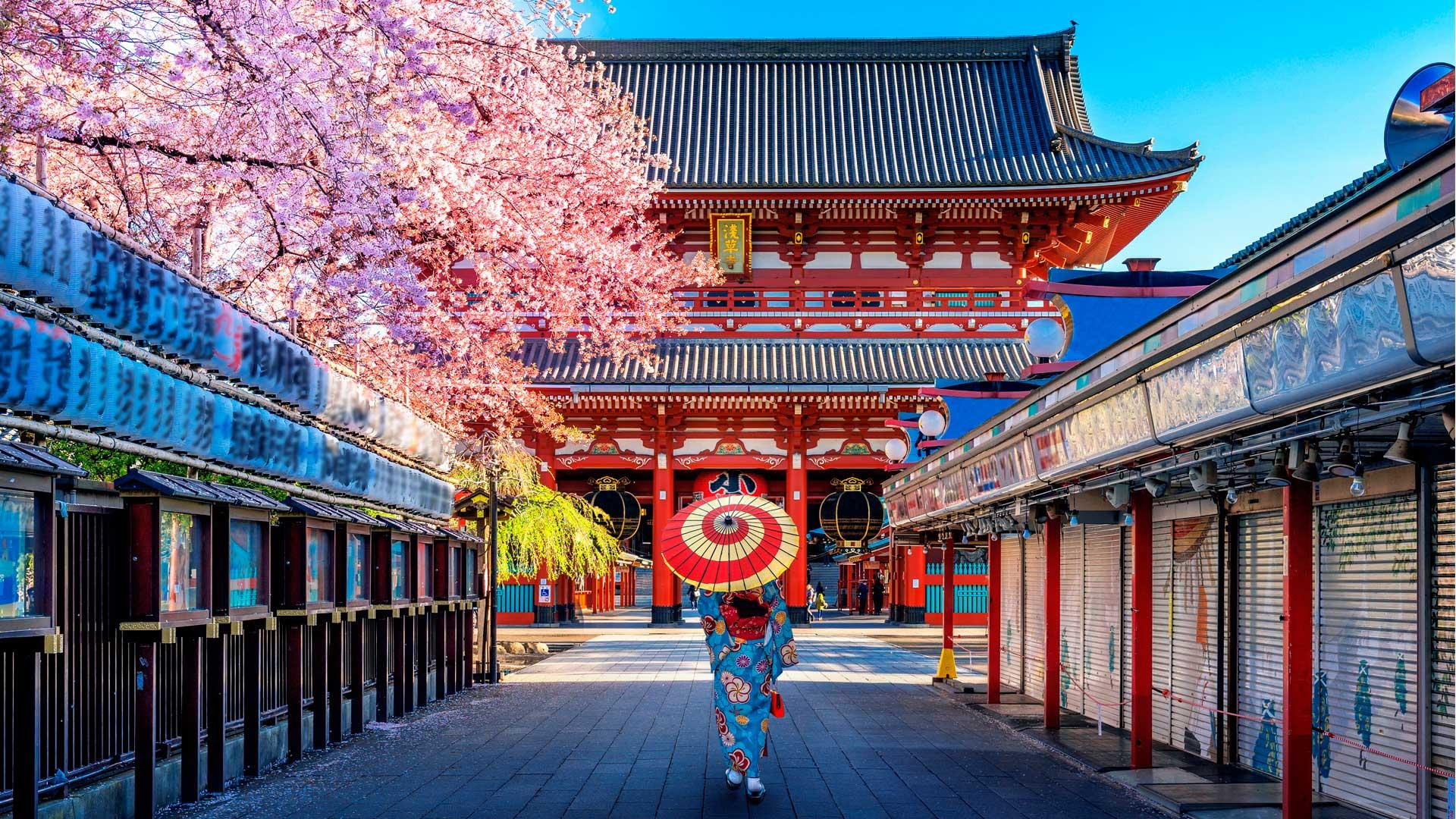 ¿Es cierto que Japón pagará la mitad de tu viaje?