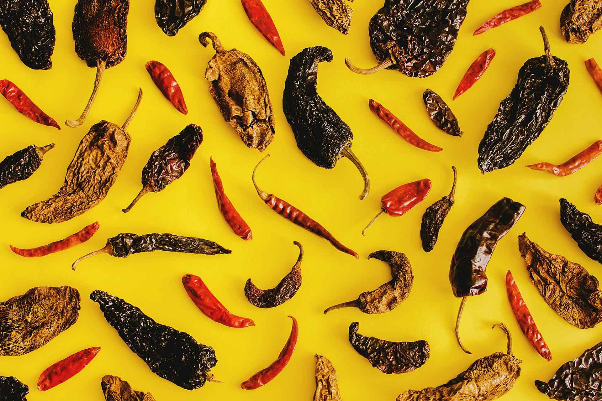 Museo gastronomía mexicana