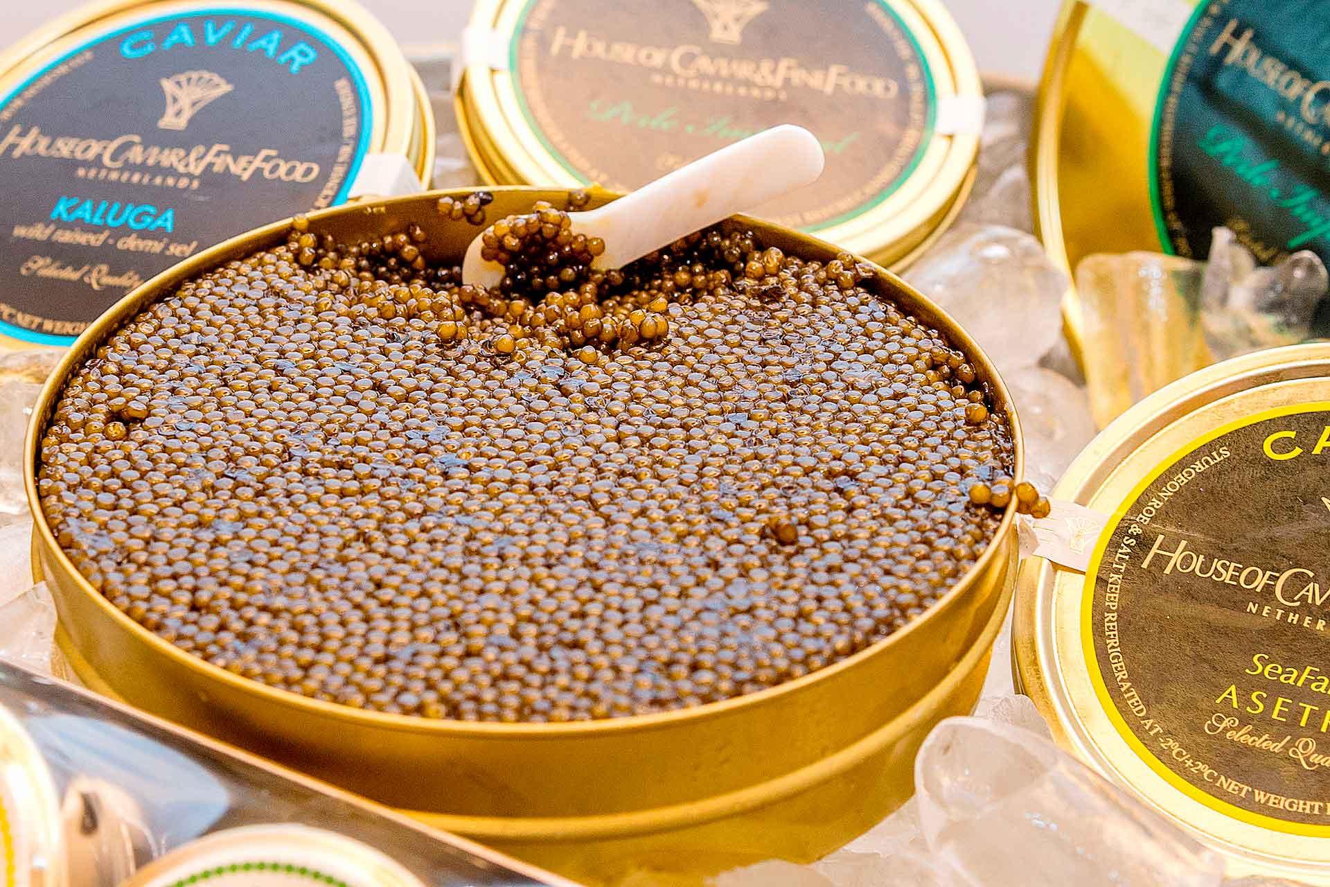 Caviar fine