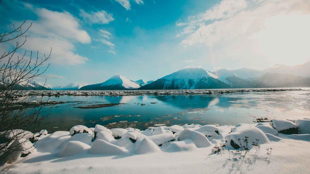 ¿Por qué está en peligro el Refugio Nacional de Vida Silvestre del Ártico en Alaska?