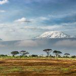 The Crown Kenia