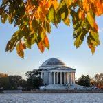 The Crown Washington D.C.