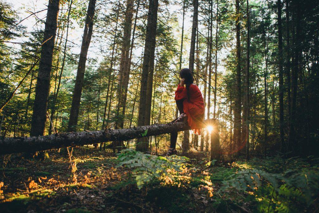 Baños de bosque: una tendencia sanadora