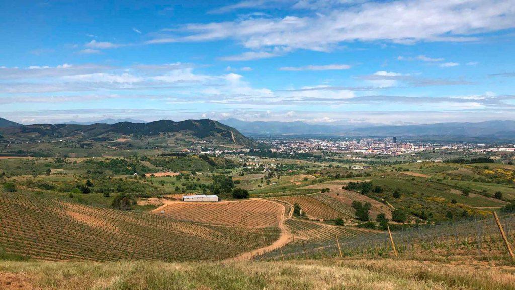 La Revelía: un vino blanco con carácter de Bodegas Emilio Moro