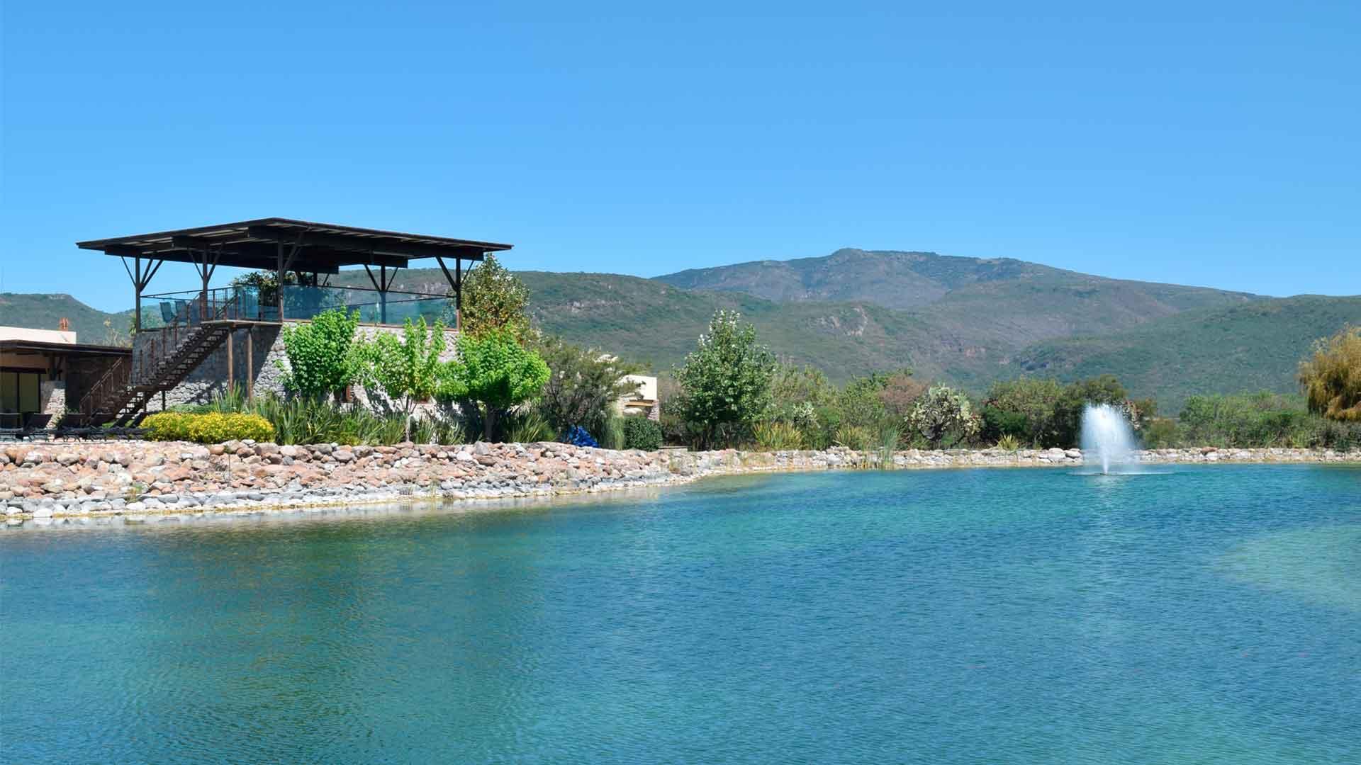Guanajuato estrena vinícola: Viñedo San Miguel