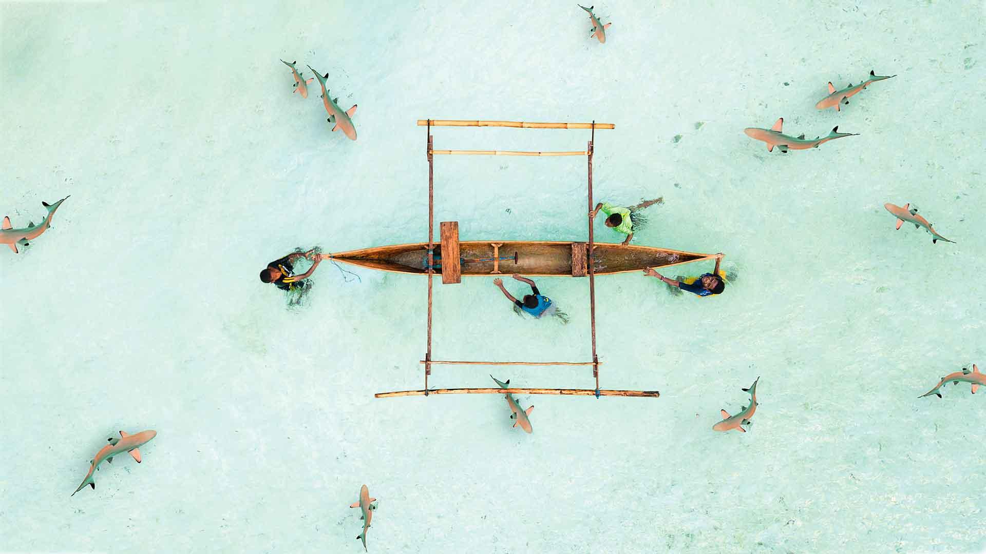 Las mejores capturas aéreas de paisajes increíbles