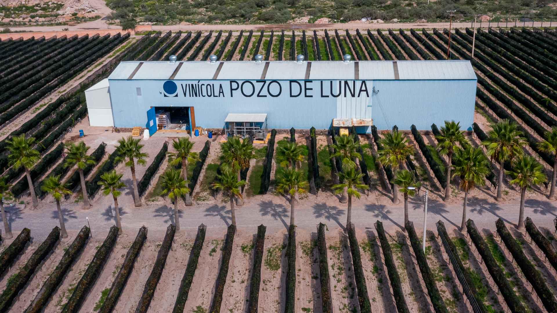 Pozo de Luna, el astro de los vinos en San Luis Potosí