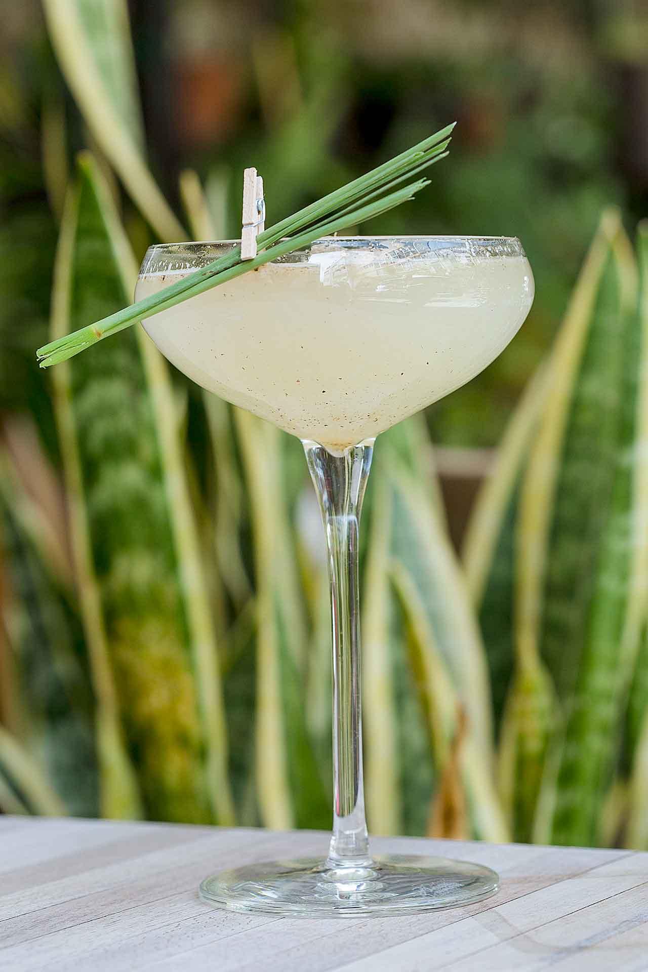 Día de la Margarita copa