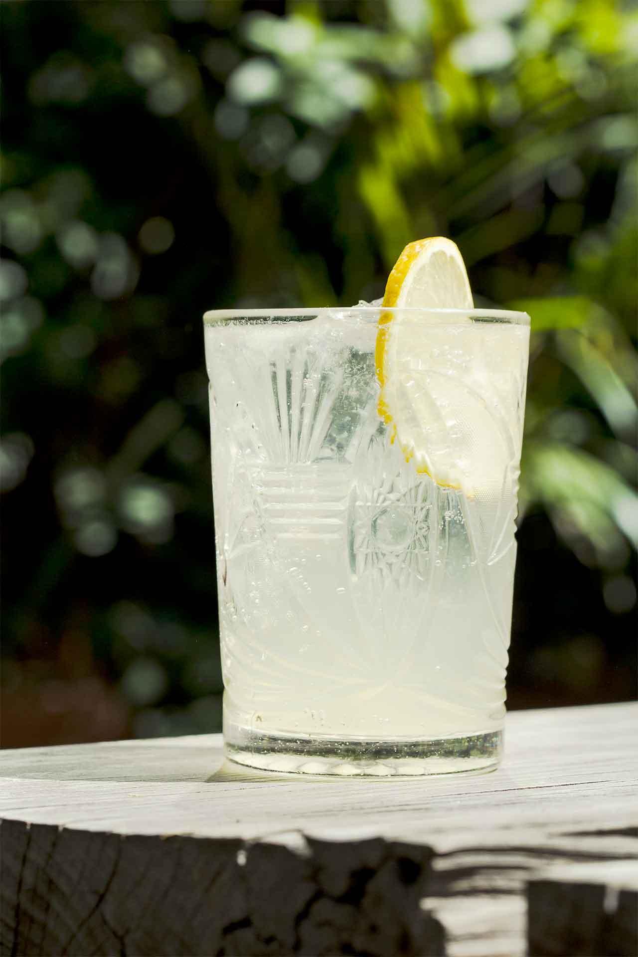 Día de la Margarita limón