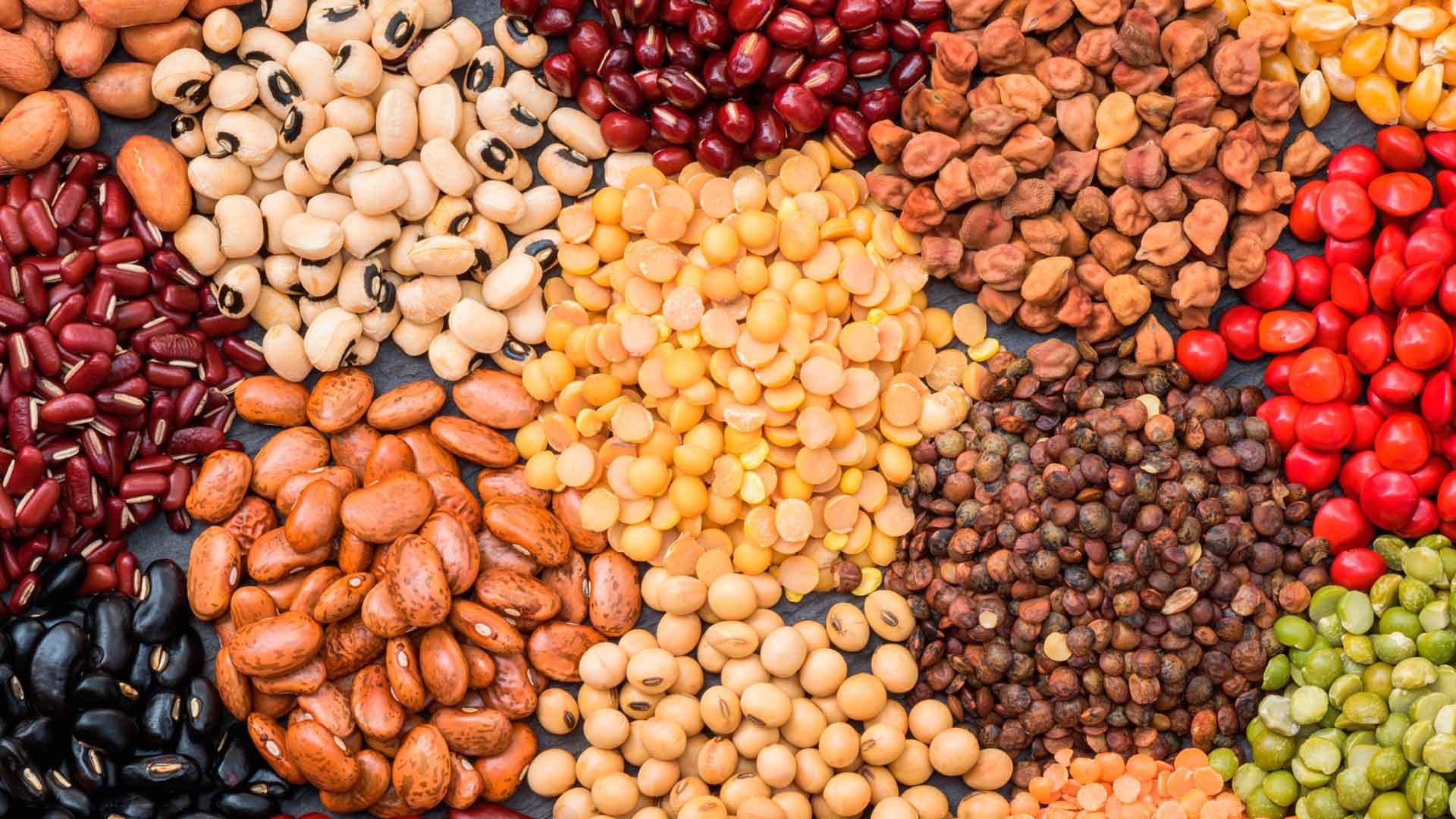 Legumbres: alimento milenario que nutre cuerpo y mente
