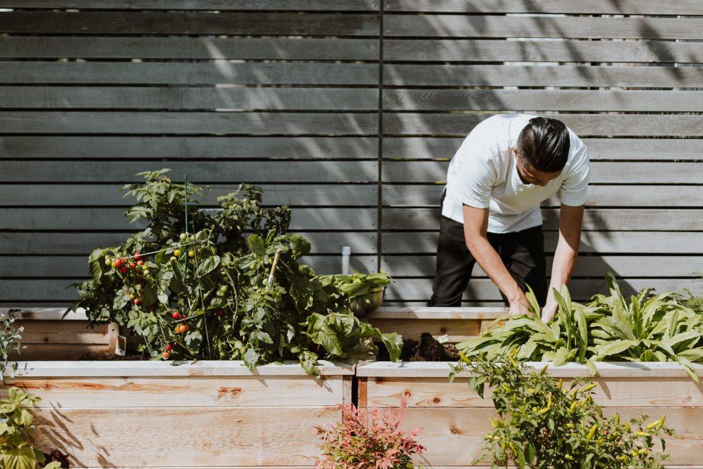 Alimentarte: un foro para sembrar el futuro de la gastronomía