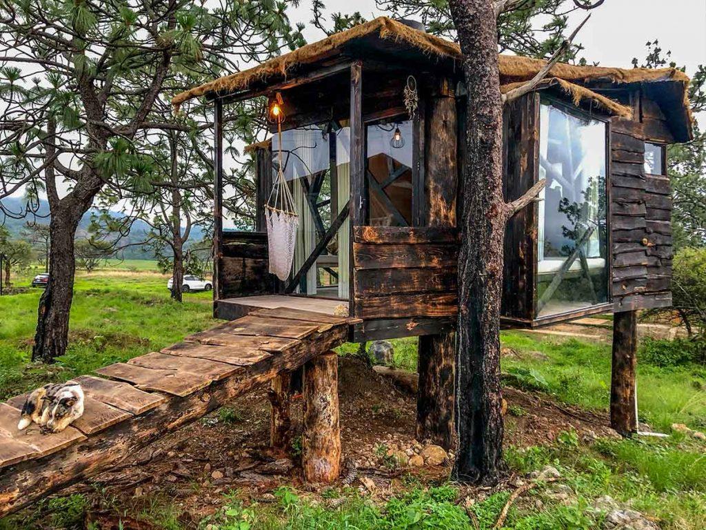 Casas de árbol en México