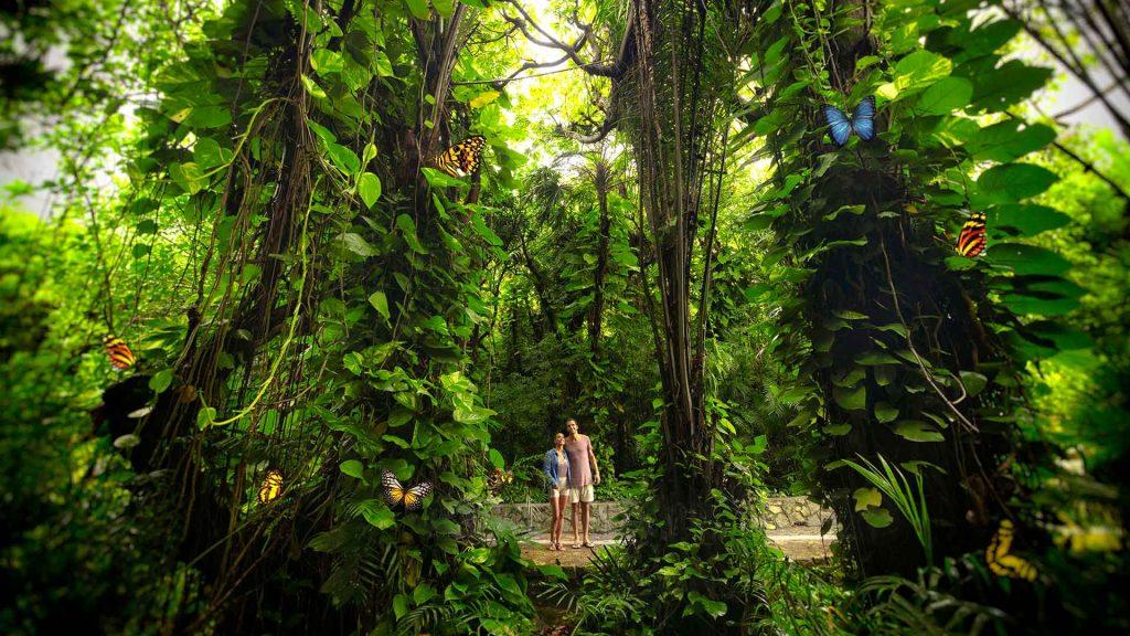 Xcaret, un parque en Riviera Maya con lo mejor de México