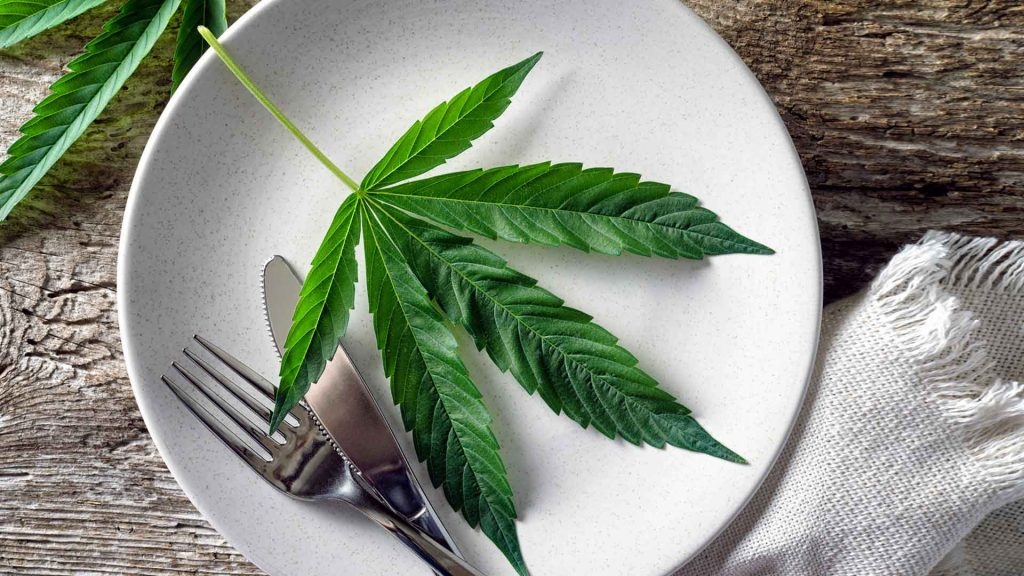 Comida cannábica: la otra cara de la marihuana
