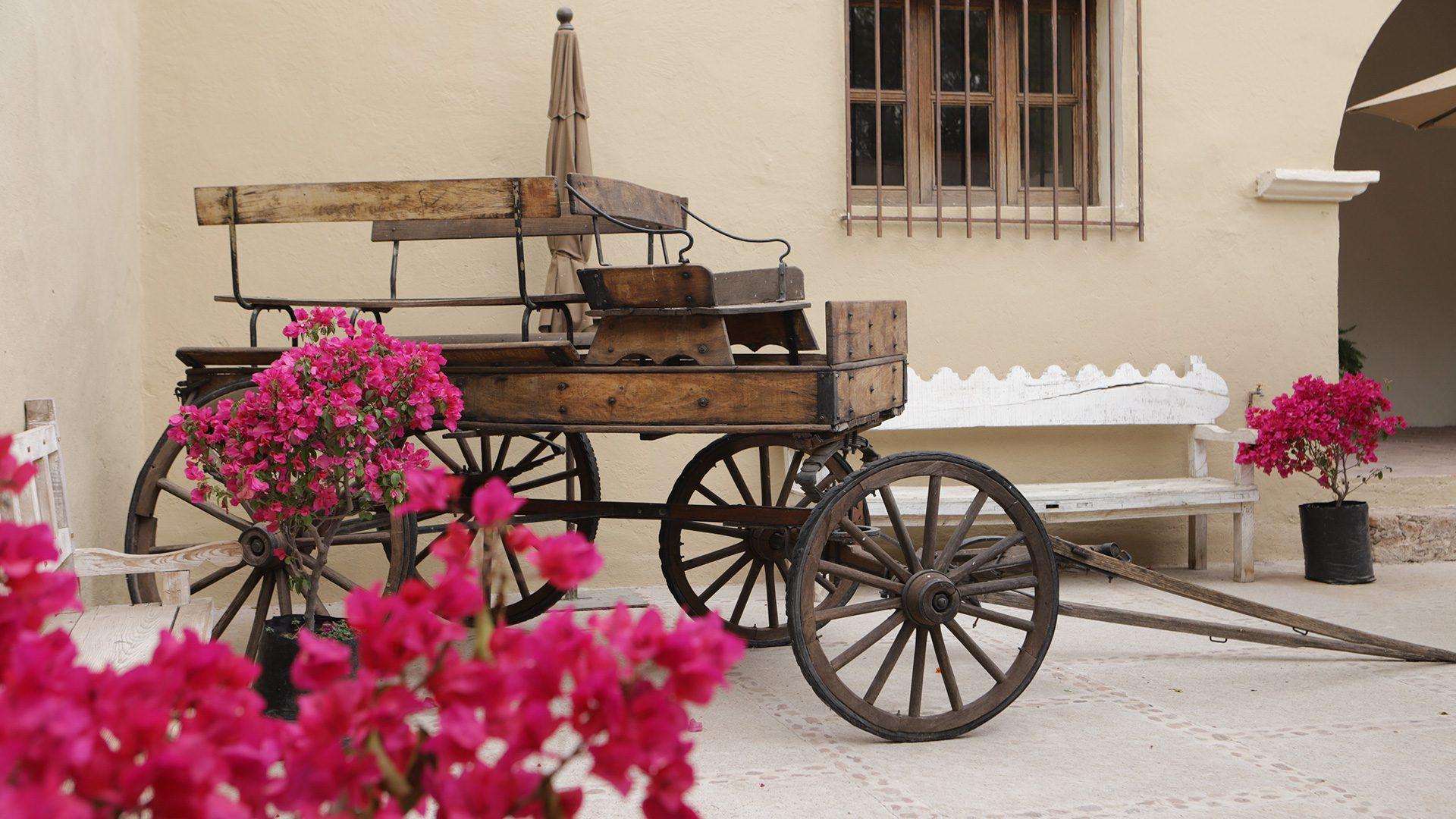 ¡De tour por Querétaro! Conoce las próximas sedes de GastroFest