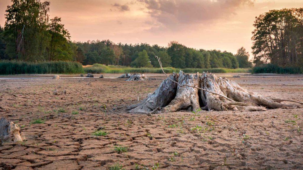 Día cero: crisis de agua en México más cerca que nunca