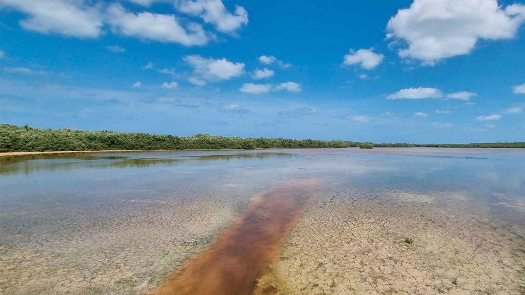 Aventura visual por Yucatán con Galaxy S21 Ultra