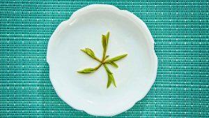 Conoce Huang Shan Mao Feng: de los grandes tés verdes de China