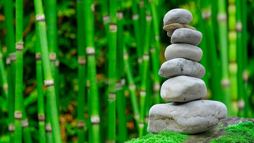 Principios del Mindfulness para llevar una vida plena