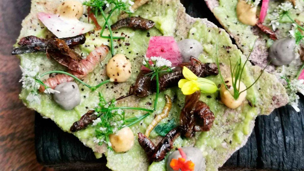 Prepara esta raspadita de insectos del chef Nicolás Cano
