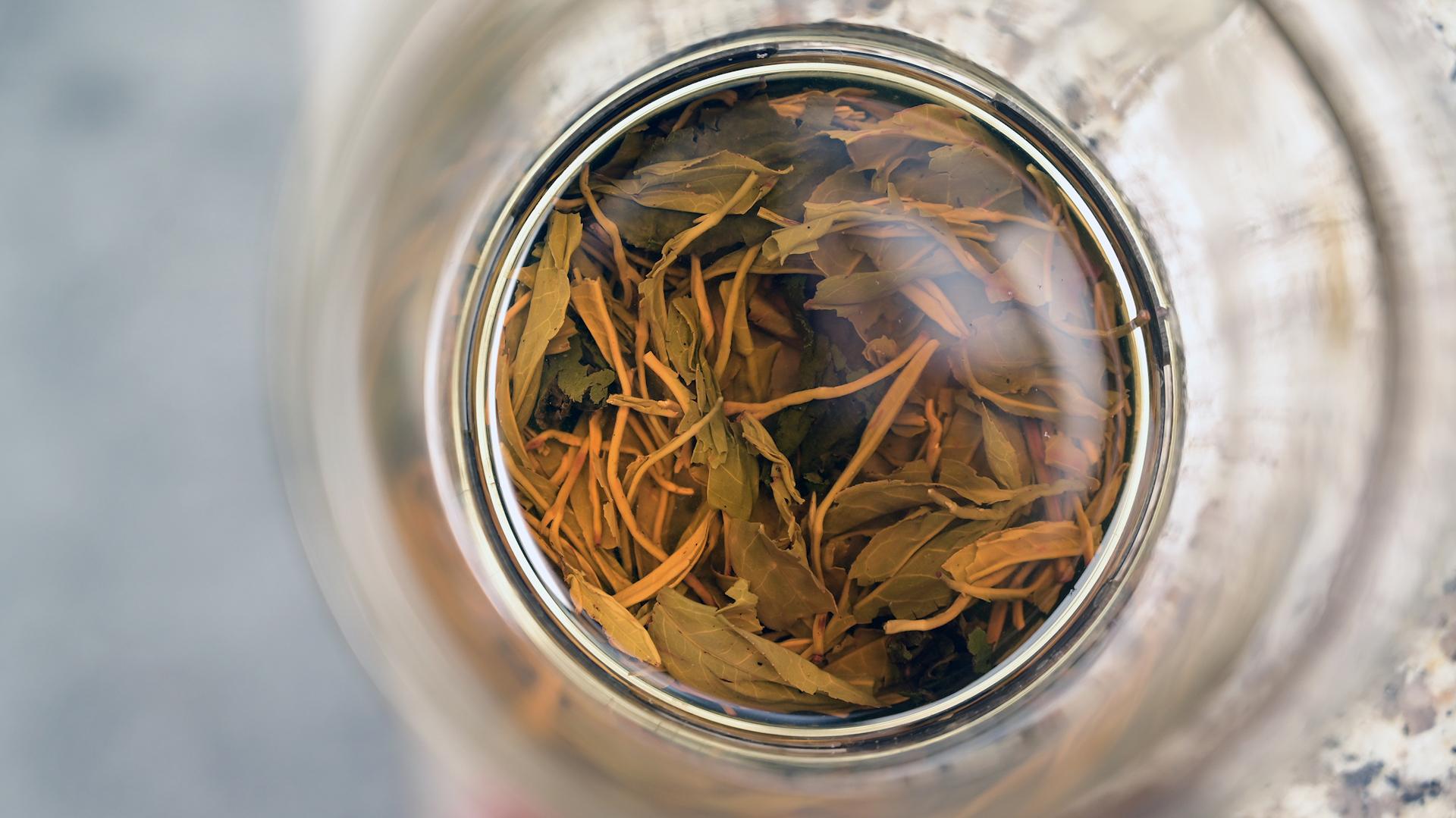 Para hacer té cold brew se necesita el recipiente adecuado