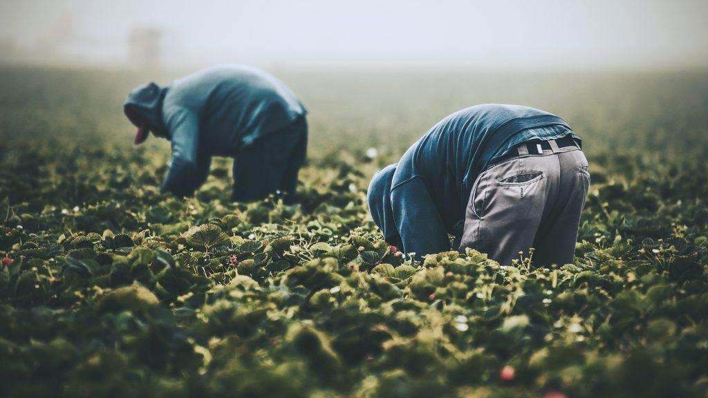 Andoni Aduriz: «la comida no es más barata, alguien más paga por ella»