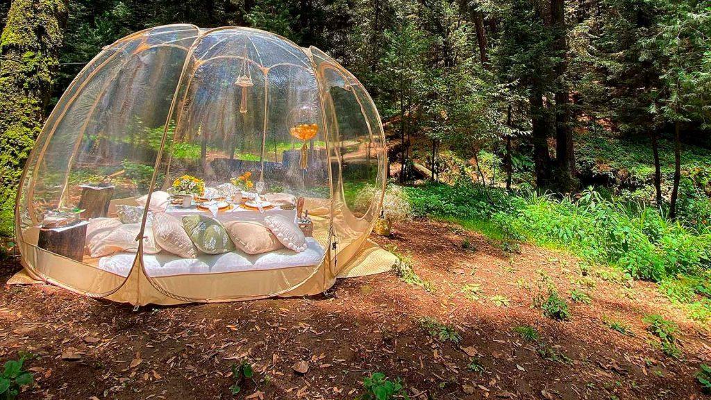 ¿Ya conoces la nueva tendencia Bubble Picnic?