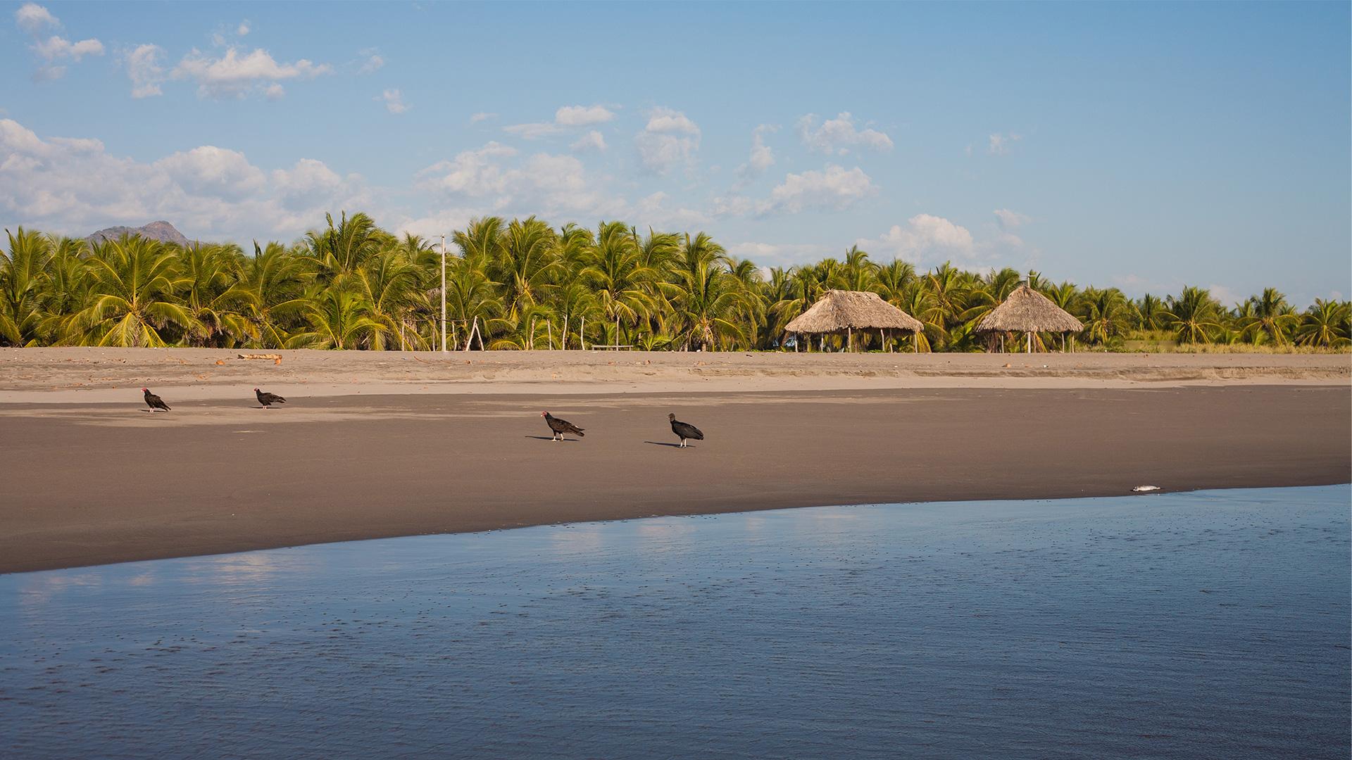 Boca del Cielo, Chiapas, una de las playas secretas más bonitas de México